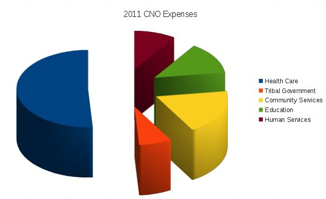 2011 CNO Expenses